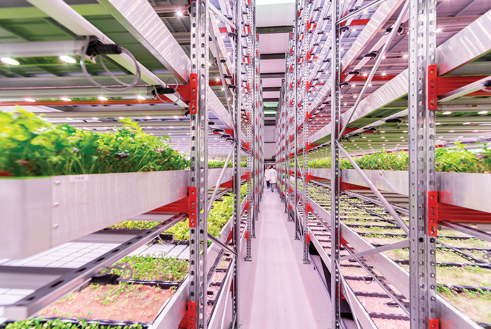 In vertical farming configurations, crop beds are racked and stacked.
