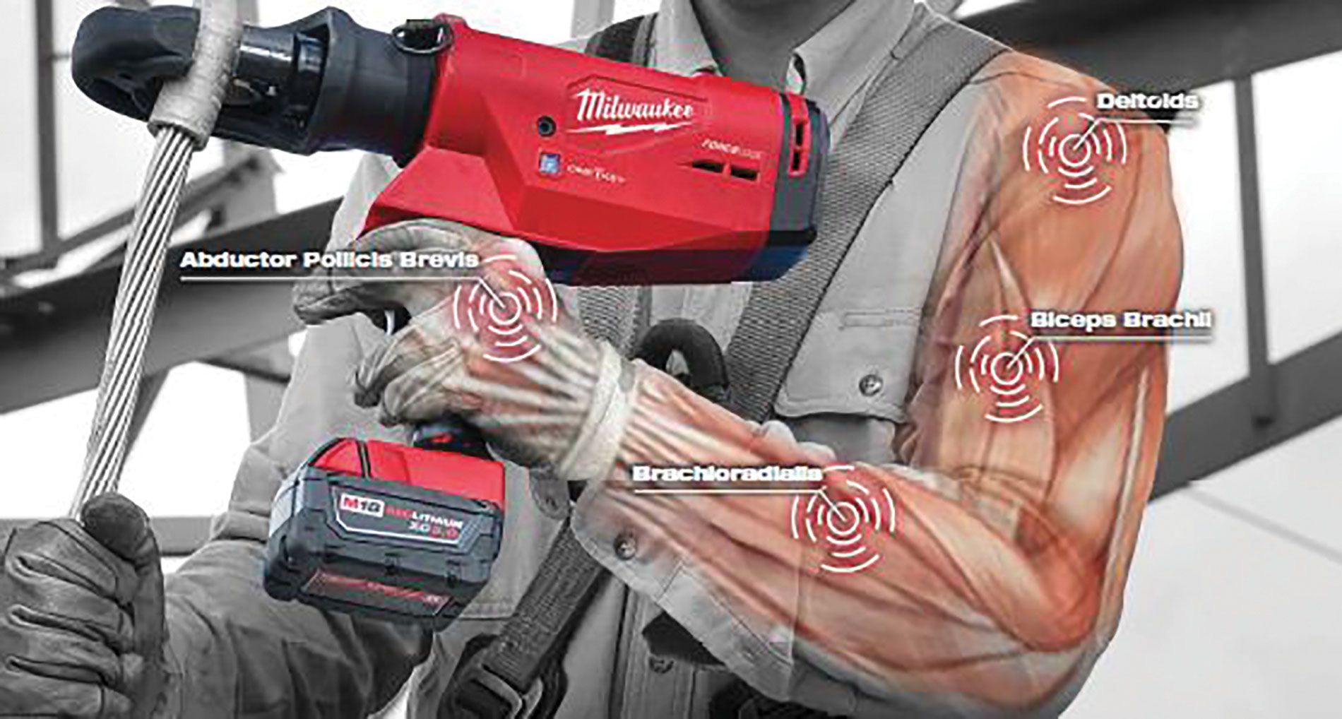 This Milwaukee illustration depicts muscles affected by power tool.