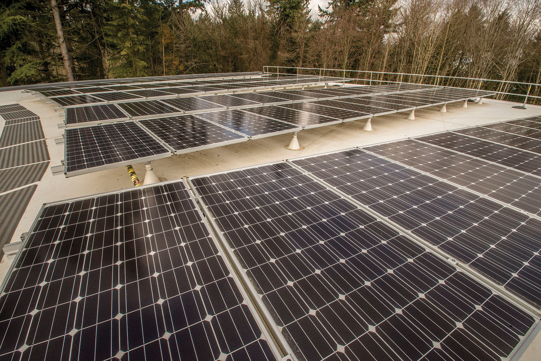 Solar panels were mounted on the Forest Hall roof.