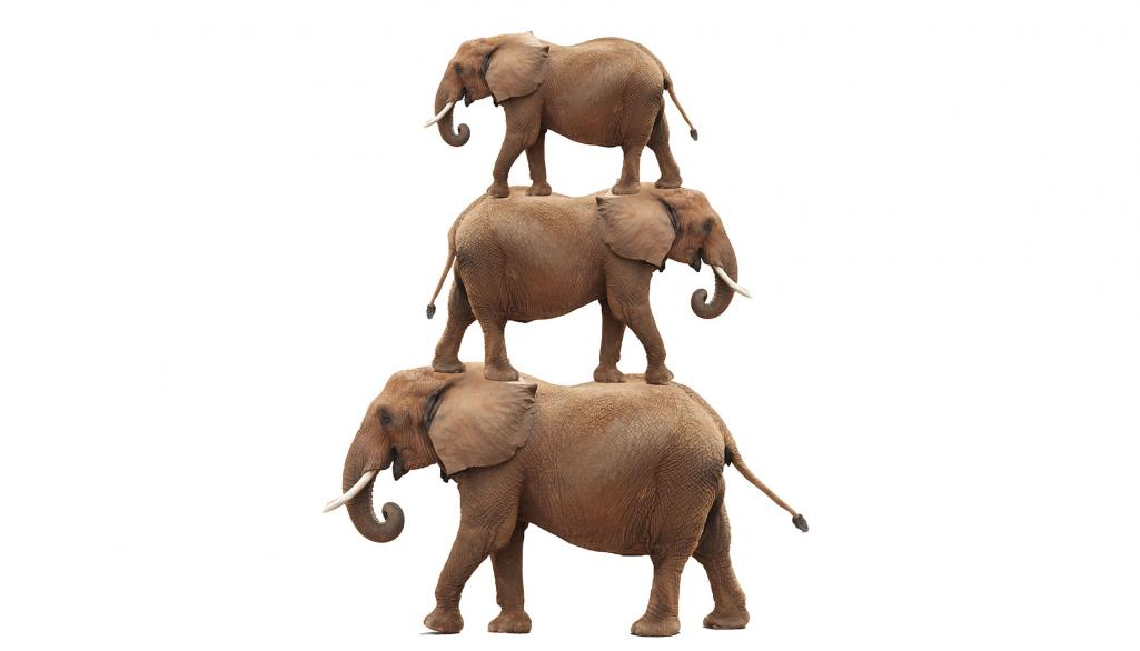 Shutterstock image of stacked elephants The Elephants in the Room: Three Issues Every Exit Plan Must Address