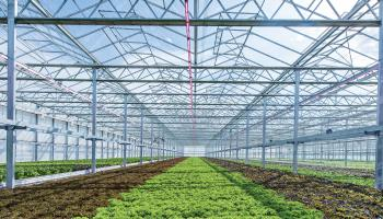 "Agrilyst Inc., a Brooklyn, N.Y.-based software company servicing this market, sees indoor farming as ""one of the fastest growing industries in the United States."" LEDs will be instrumental."