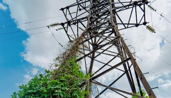 IBM, Oncor Team Up for Predictive Utility Maintenance