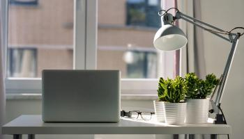 A desk sits in front of a window with a laptop, desk lamp and several plants