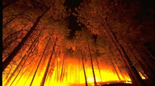 Wildfire Image by skeeze from Pixabay