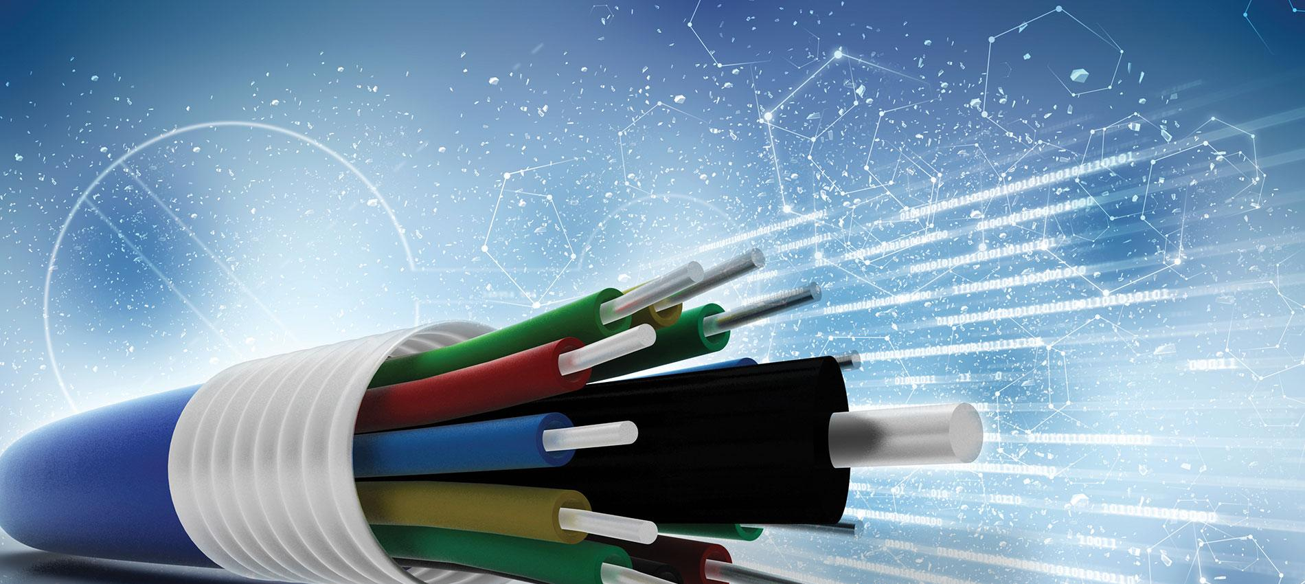 Fiber Optics Image Credit: Shutterstock / Ranjith Ravindran